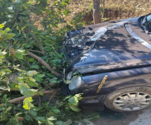 Himachal Governor Car Accident